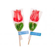 Lizak Tulipan