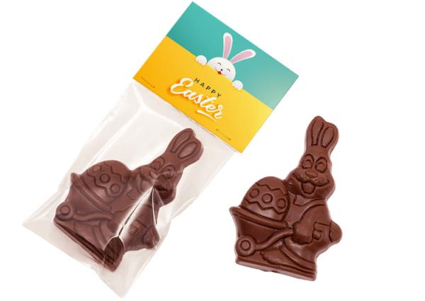 mini zajaczek