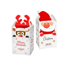 Mini Christmas Package 21.61