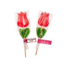 Tulip Lollipop 11.18