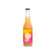 Fruit Drink 330ml 17.09