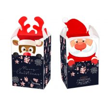 Mini Christmas Package 21.61
